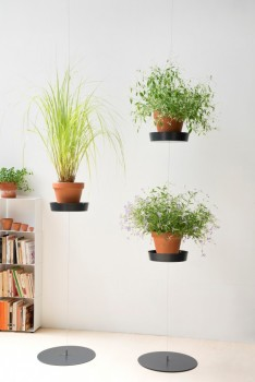 soucoupe-support-plante-4
