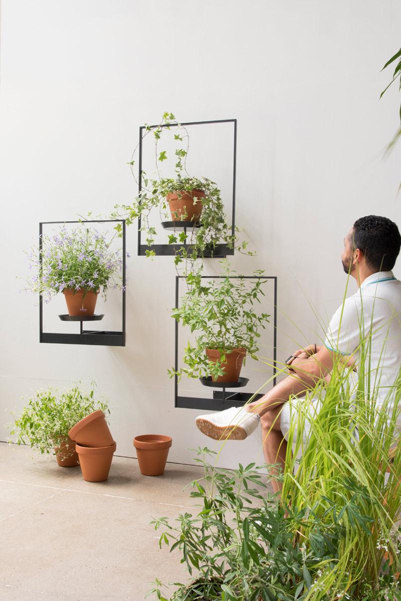 Pflanzenbilder