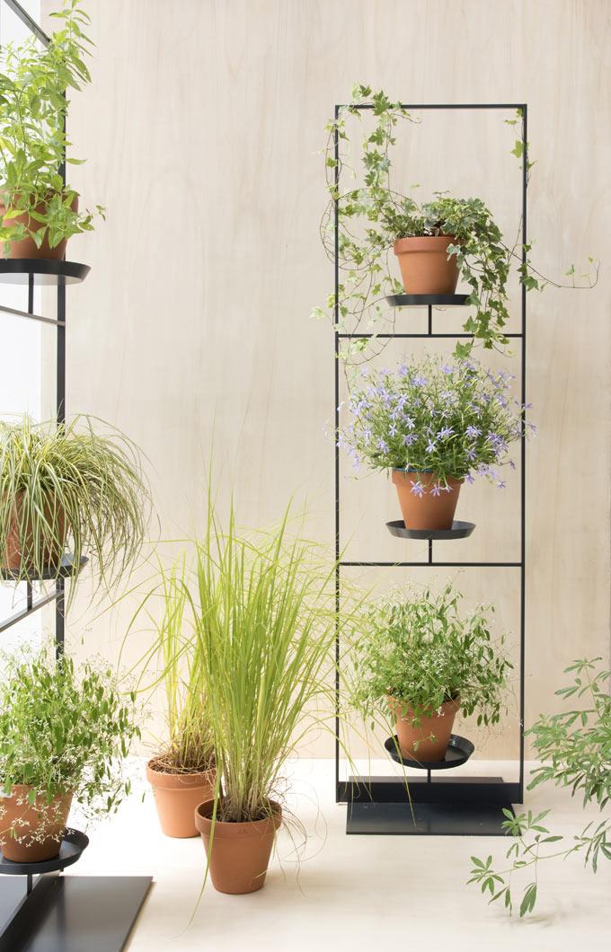 Pflanzenwand